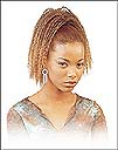 Harlem Collection Pony Tail - Samba-45