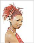 Harlem Collection Pony Tail - Samba-47
